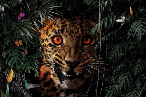 Jack Jaguar